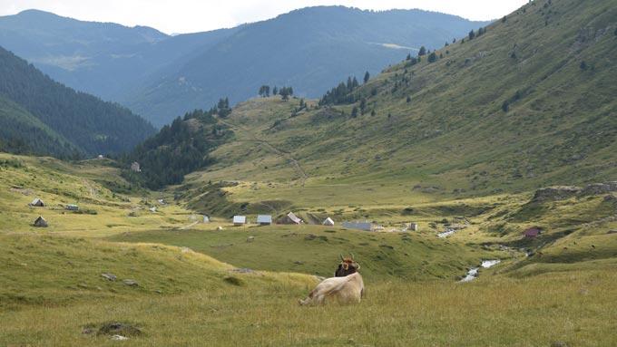 Trekking Cumbres Balcánicas