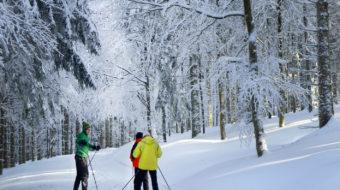 Curso de Iniciación Esquí de Fondo Selva Negra 2020