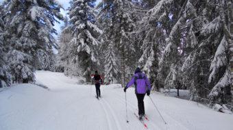 Curso de Perfeccionamiento Esquí Selva Negra 2020