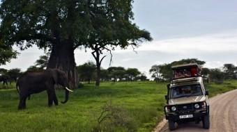 Tanzania Safaris Extensiones 2015