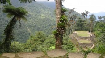 Trekking Colombia – Ciudad Perdida