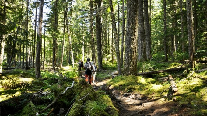 trekking estados unidos