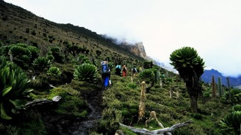 Trekking Kenia