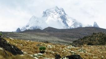 Trekking Monte Kenia 2020