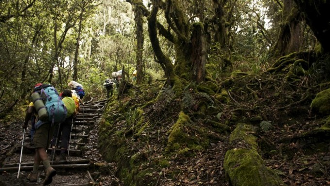 trekking-kilimanjaro-taranna-001