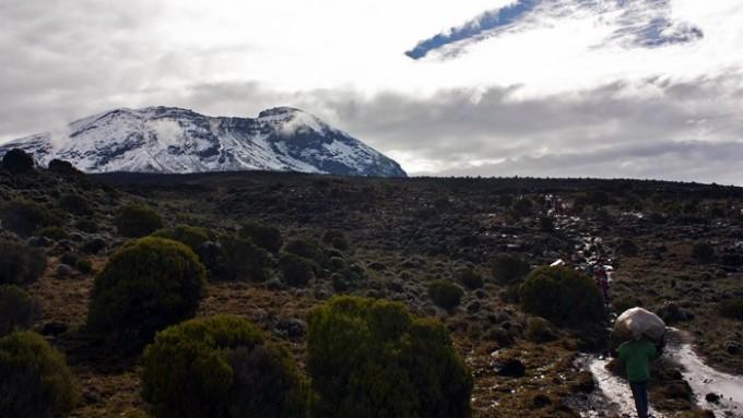 Trekking Kilimanjaro Marangu