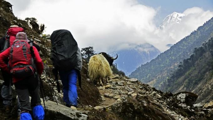 trekking makalu