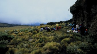 Trekking Primavera
