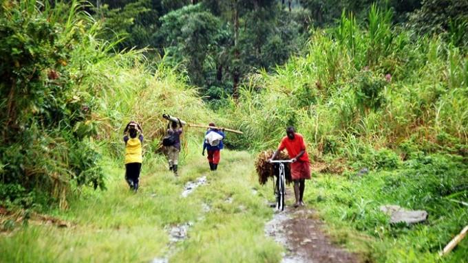 Trekking Rwenzori Uganda