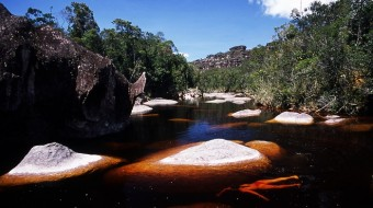 Trekking Auyantepuy – Salto Angel
